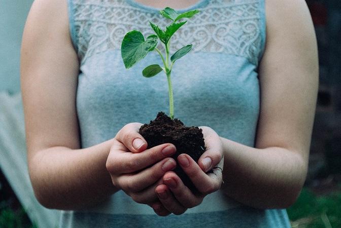 környezetvédelem közösségi iroda vác